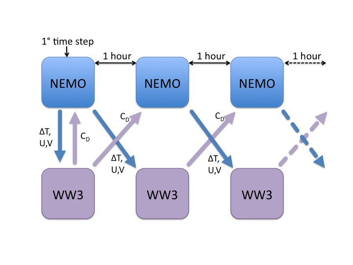 Nemo current - wave coupling